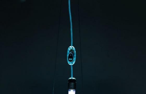 A Suspended Greenhouse Lamp