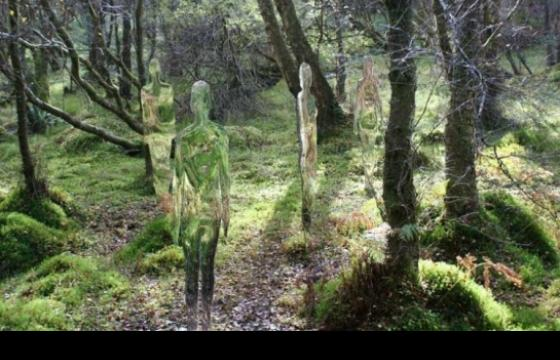 Mirroed Figures in the Forest by Rob Mulholland