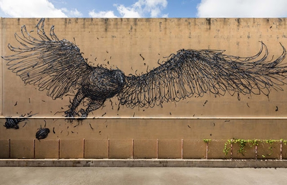 Bird by DALeast in Honolulu