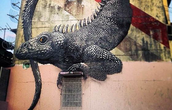 Roa in Panama City