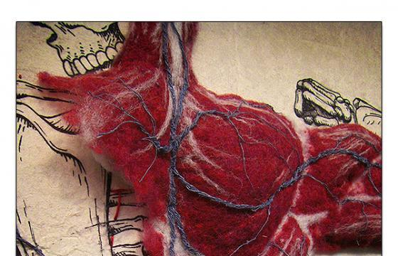 Dan Beckemeyer's Felted Anatomy