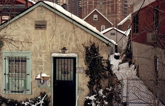 """Anna Collette's """"Urban / Suburban"""""""