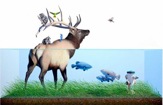 Josh Keyes for Doctors Without Borders
