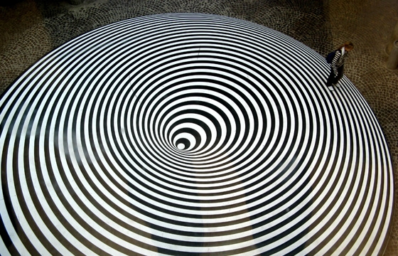 The Work of Bridget Riley