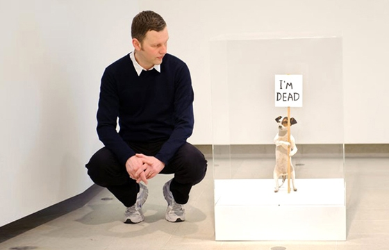 David Shrigley, September 2012