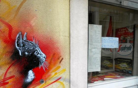 Cat Stencil by C215 in Lisbon