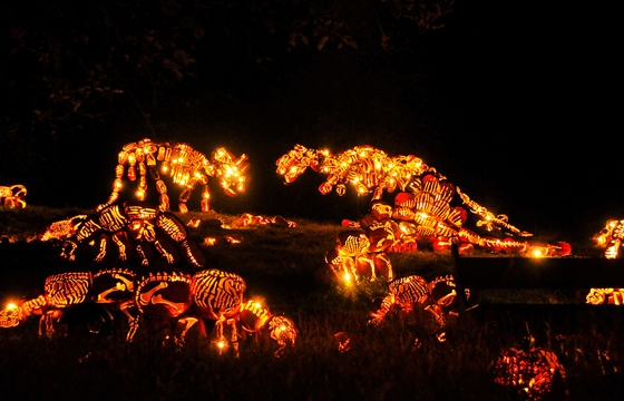 The Best of New York's Great Jack O'Lantern Blaze