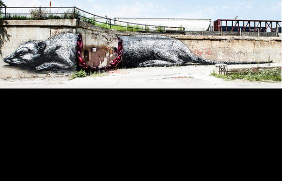 Roa's Mural Eaten Up in Chicago