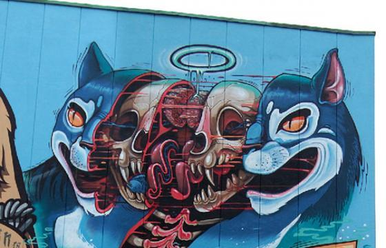 Nychos Dissects a Cat