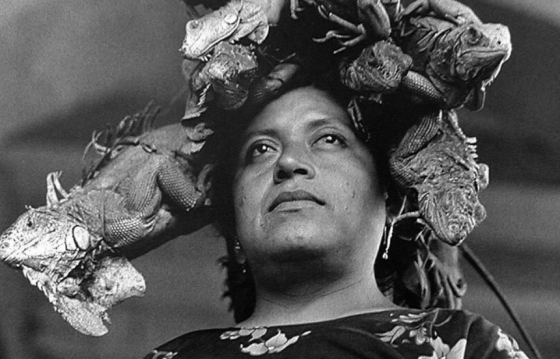 50 years of photographs by Graciela Iturbide