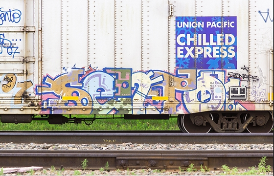 Chilled Sento Express