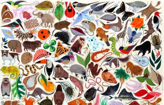 Master of the Month: Charley Harper