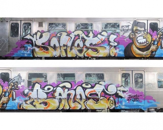 Sofles x Banos clean train