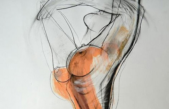 The Nude Drawings of Carmel Jenkin