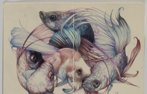 "Marco Mazzoni ""Memory is a Bothersome Consoler"" @ Patricia Armocida, Milan"