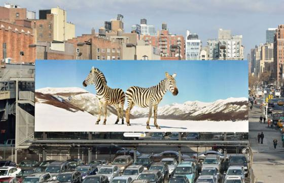 Paola Pivi newest artist for High Line Billboard Project
