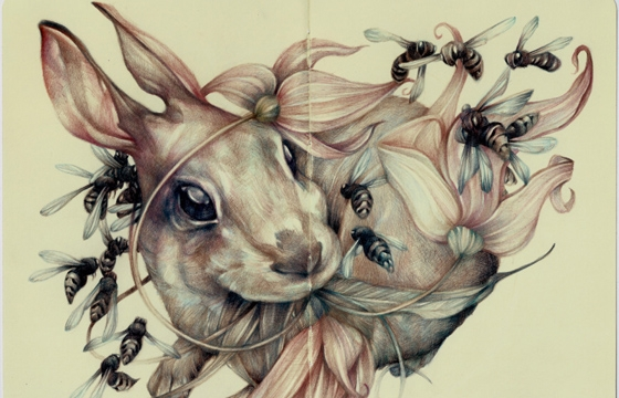 Marco Mazzoni and Lindsey Carr @ Roq La Rue Gallery, LA