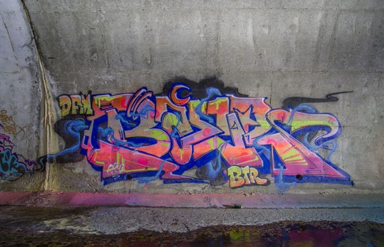 Tunnel Dwelling with Baer
