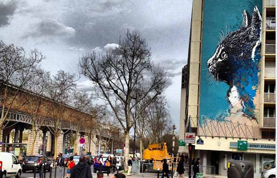 C215 creates large Cat Portrait in Paris