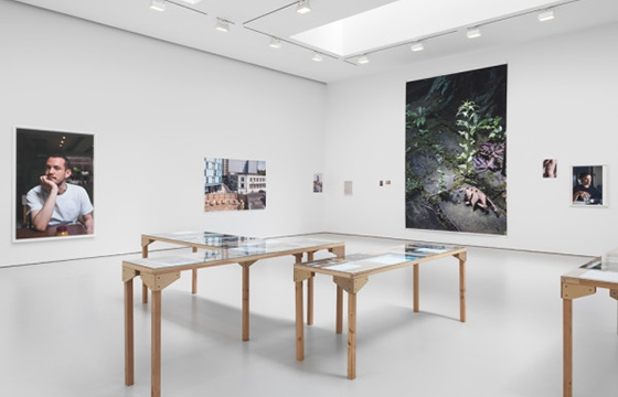 "Wolfgang Tillman's ""PCR"" @ David Zwirner, New York"
