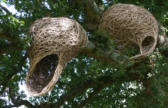 Laura Bacon's Nest-Like Sculptures
