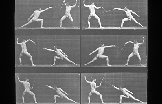 Eadweard Muybridge's Studies in Motion