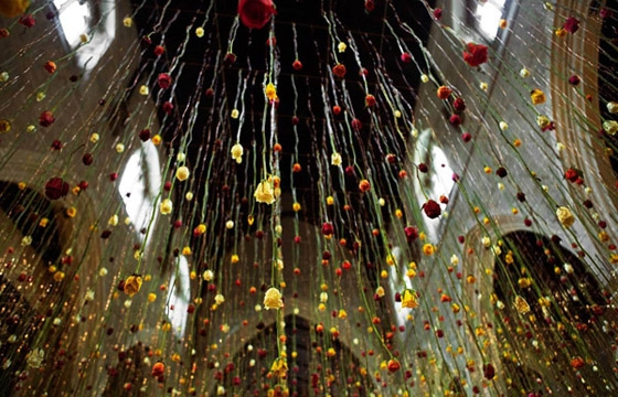 Rebecca Louise Law's Suspended Flower Installations