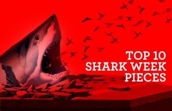 Top 10 Shark Week Pieces