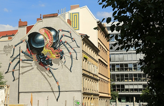 Nychos spider in Hamburg