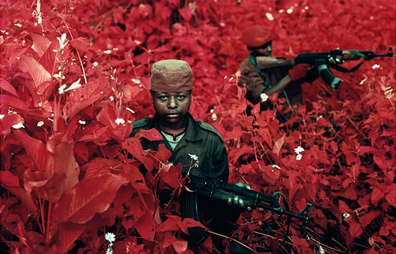 "Using infrared film to capture ""The Enclave"" by Richard Mosse"
