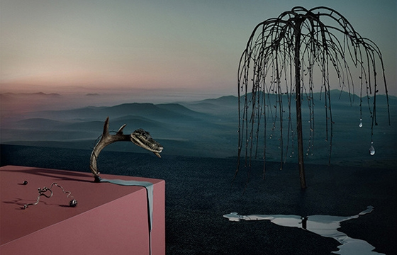 Surreal Photography by Kila & Rusharc