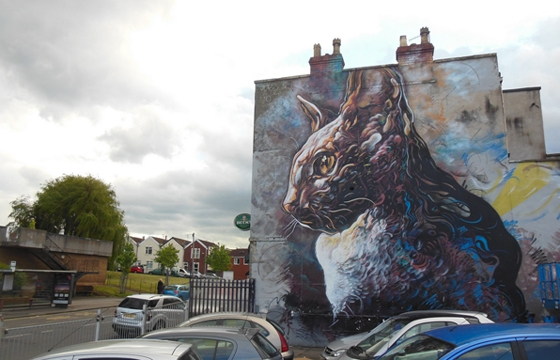 Massive cat by C215 in Bristol