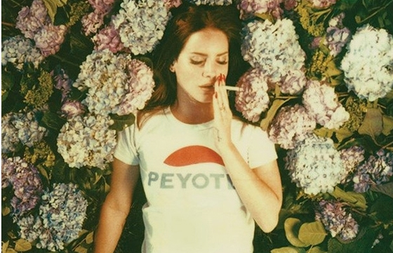 Lana Del Ray shot by Neil Krug