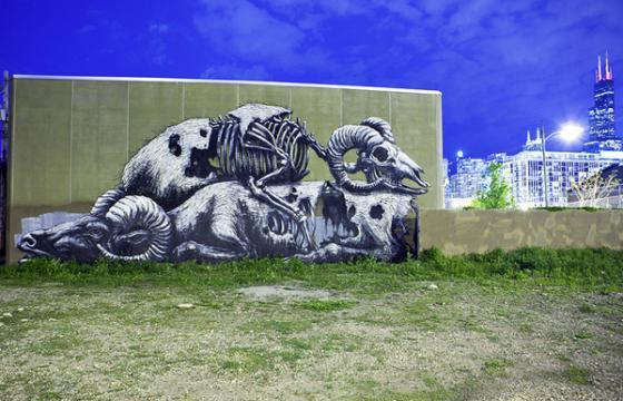ROA In Chicago