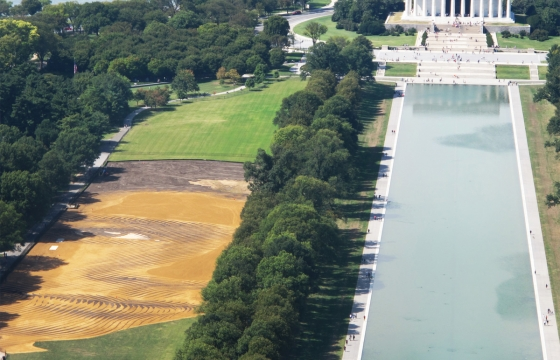 6-Acre Portrait on National Mall
