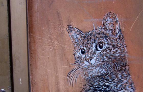 Feline Friendly C215 Stencil!