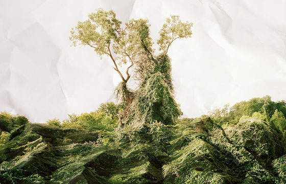 Illusory Landscape Photographs by Laura Plageman